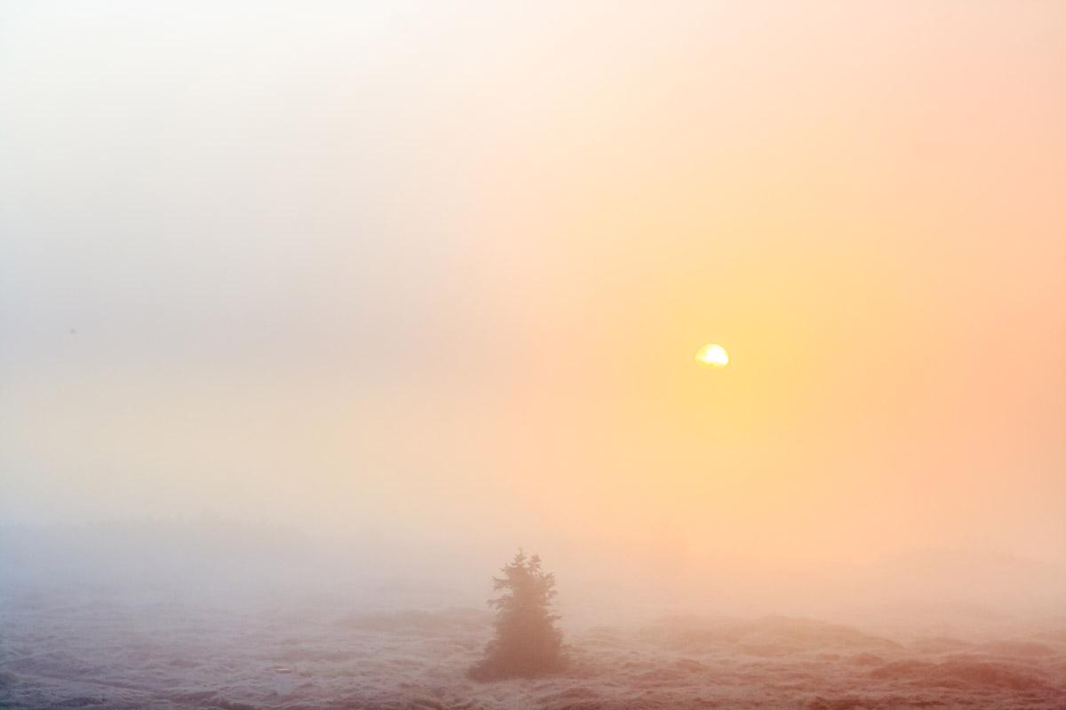 Słońce za mgłą